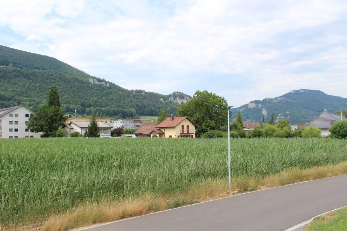 Überbauung 4 MFH Breitstein, Niederbipp